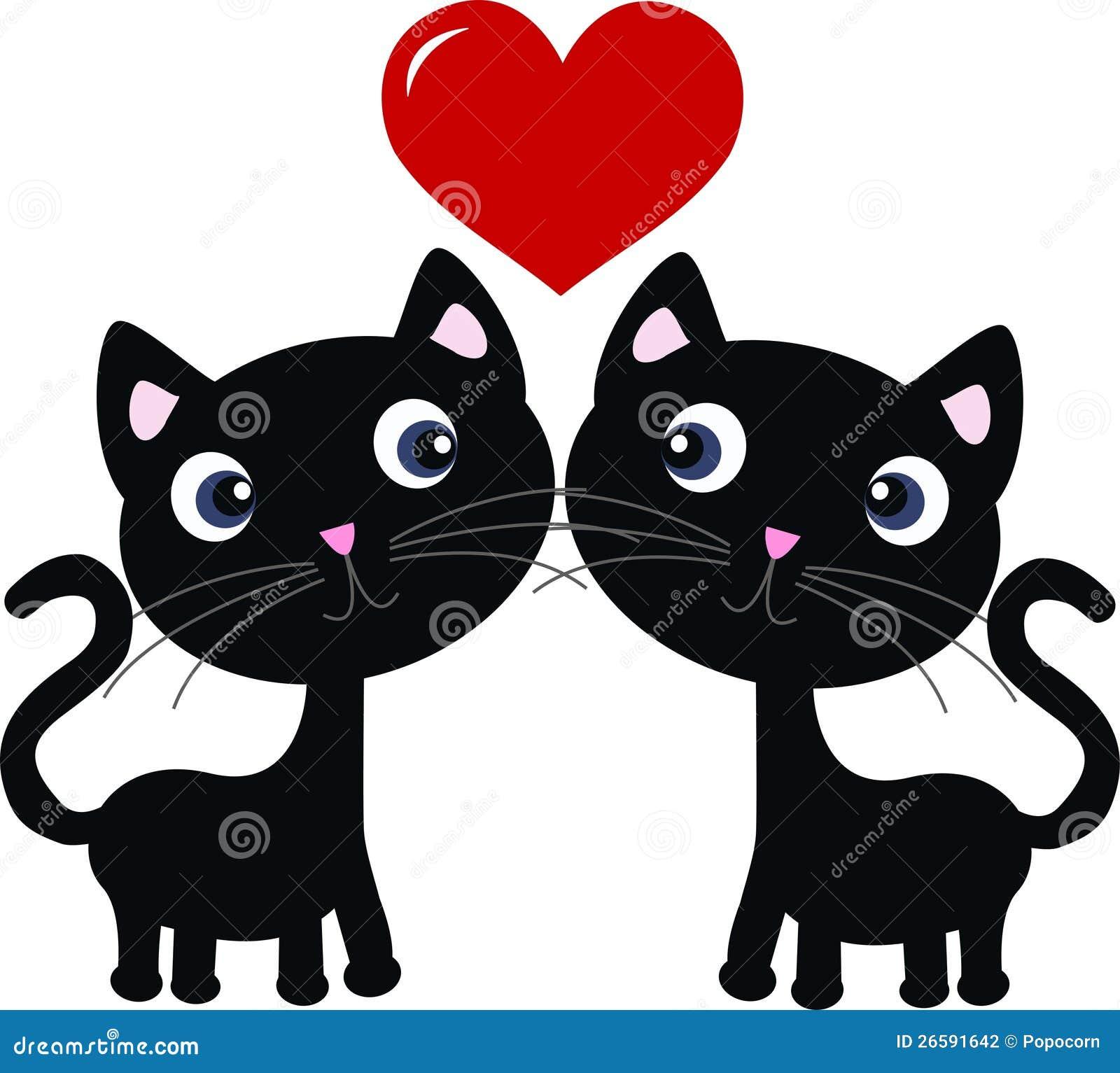 Deux chats doux dans l amour