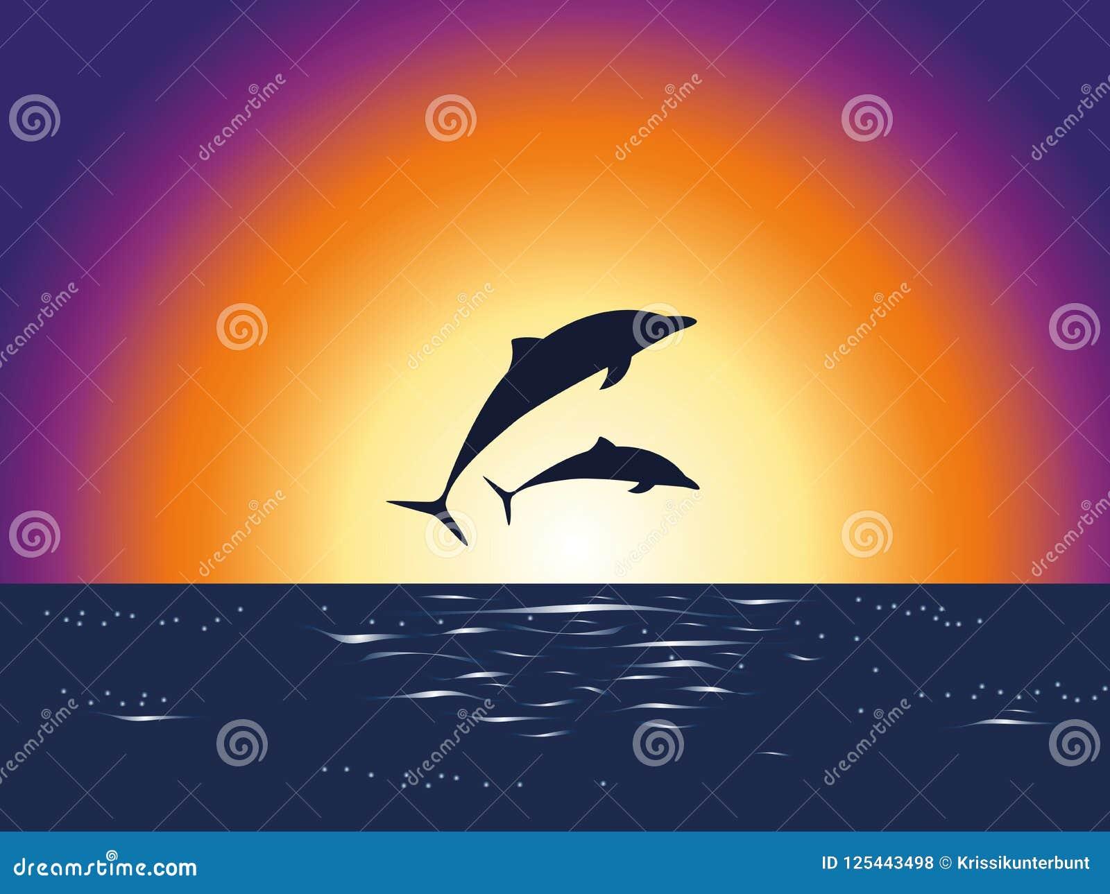 Deux dauphins silhouettent sauter à la mer et à l océan de lever de soleil