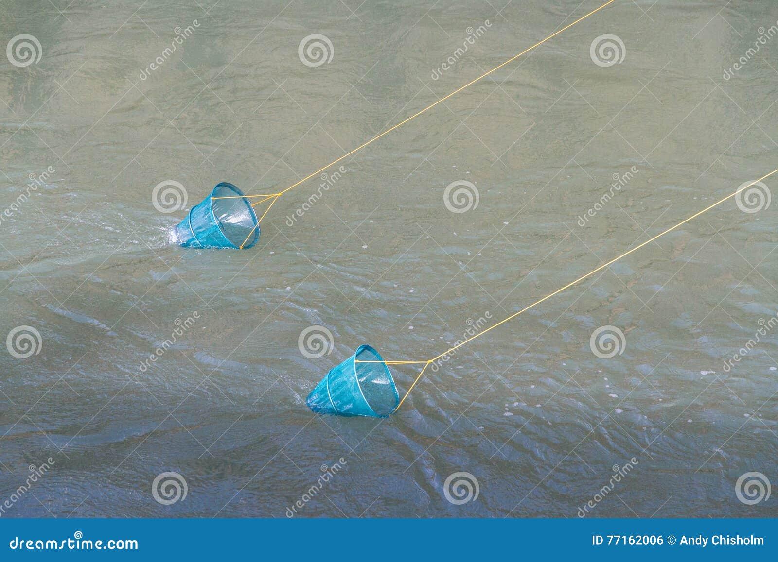 Deux filets bleus de crabe de pêche sur des lignes