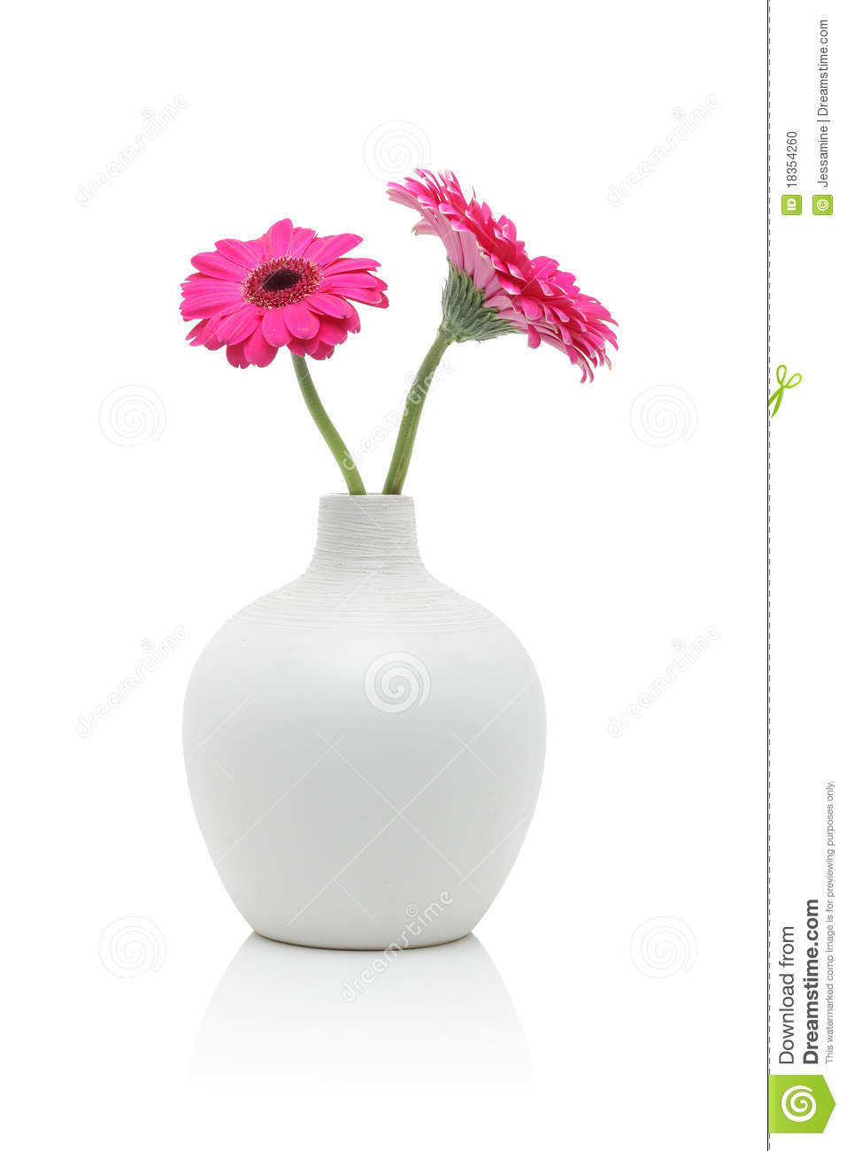 deux fleurs roses de gerbera dans le vase blanc photo stock image du bouquet lumineux 18354260. Black Bedroom Furniture Sets. Home Design Ideas