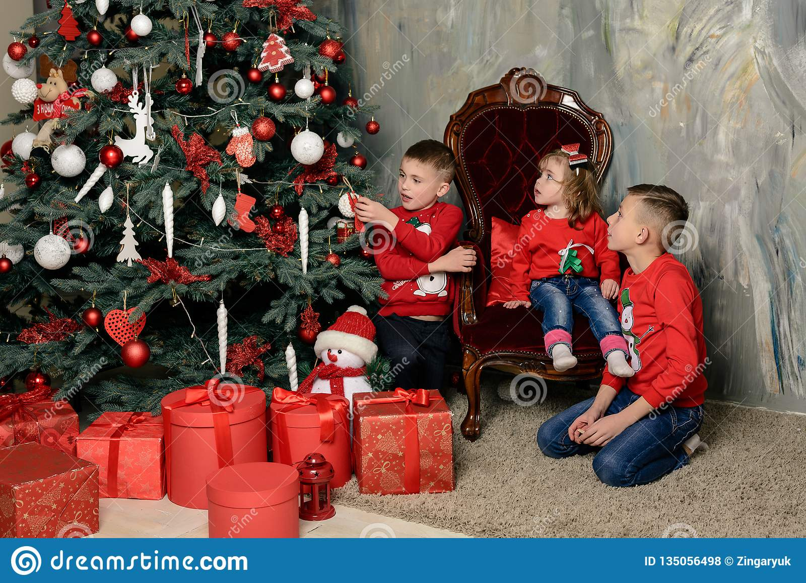 Deux garçons heureux à la différence de fête des sapins regardent les cadeaux