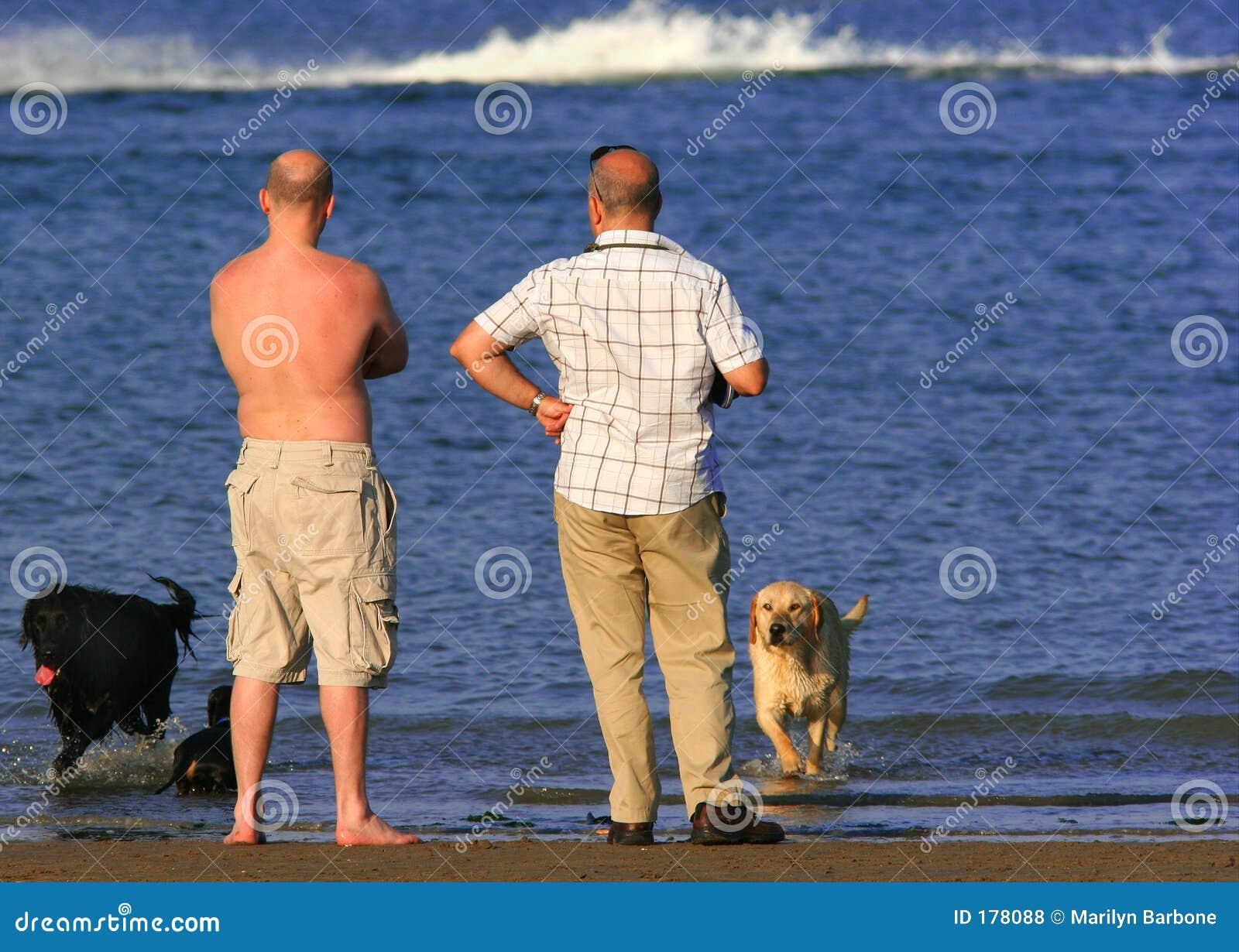 Deux hommes et leurs crabots