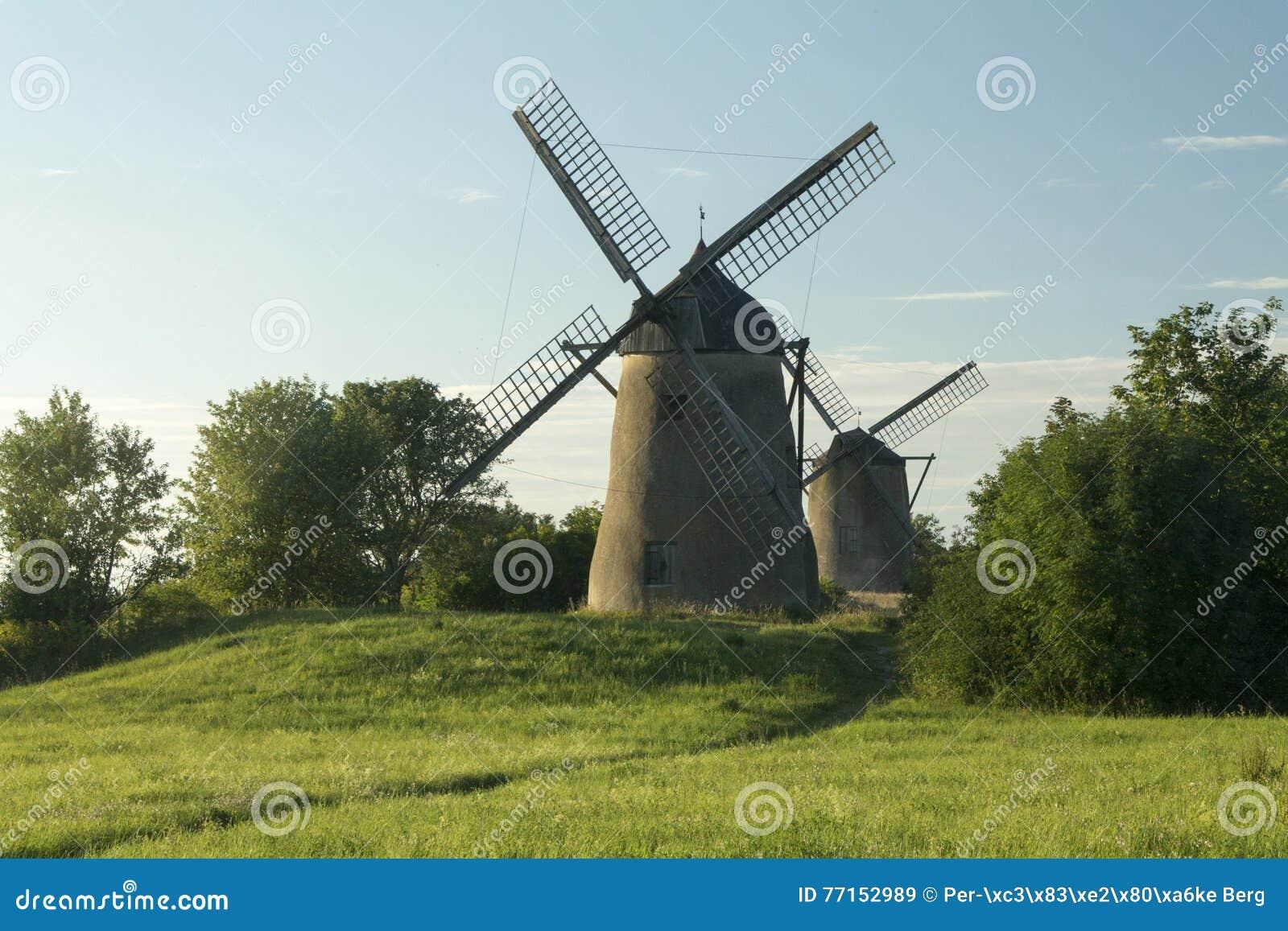 Deux moulins à vent dans un domaine