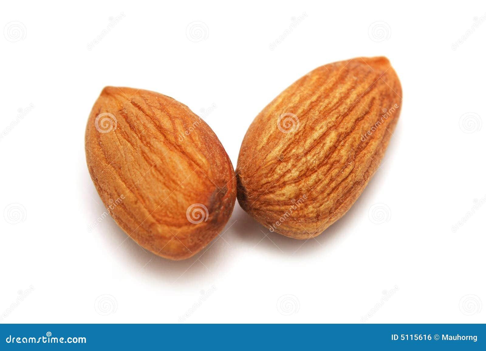Deux noix d amande