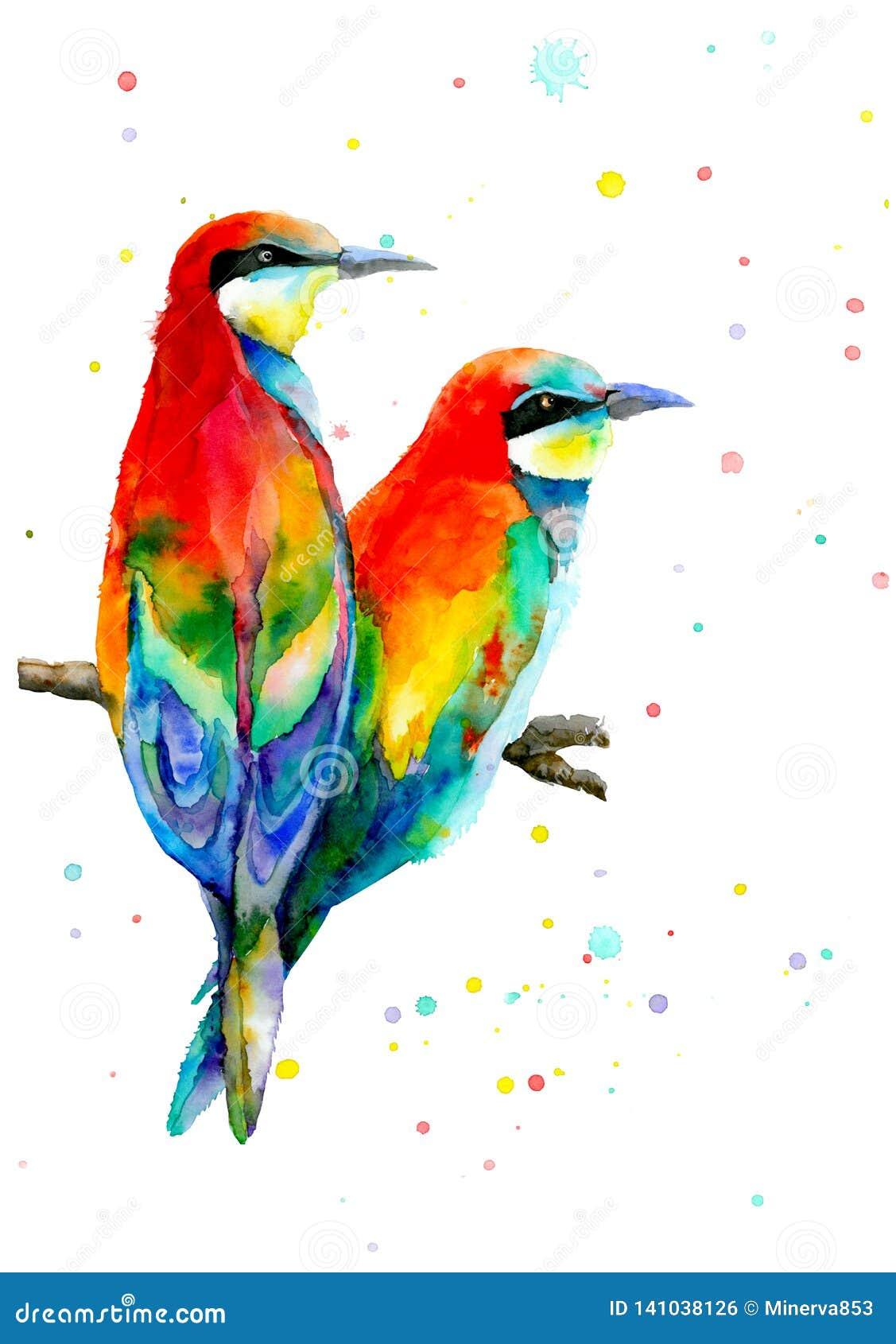 Deux oiseaux colorés se reposant sur la branche et regardant la même direction Oiseaux d amour et un arbre Illustration d aquarel