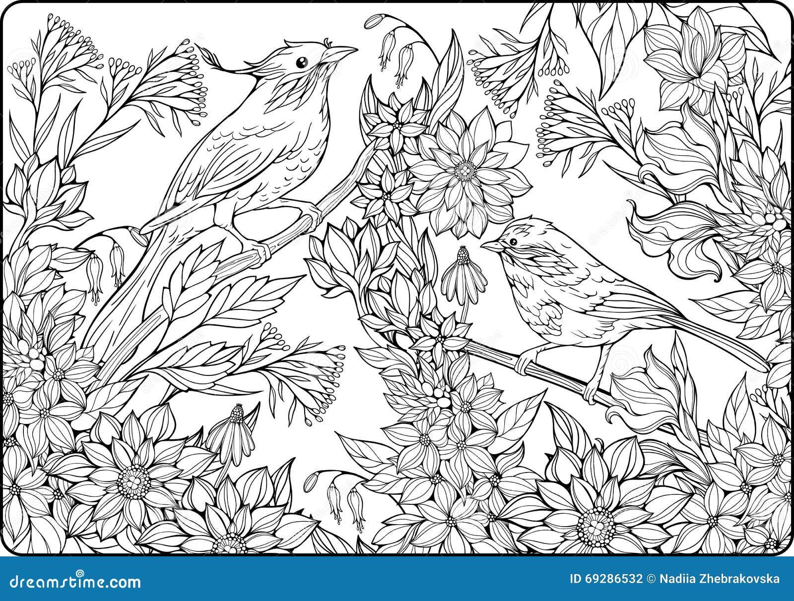 Deux oiseaux sur des branches et des un bon nombre de fleurs