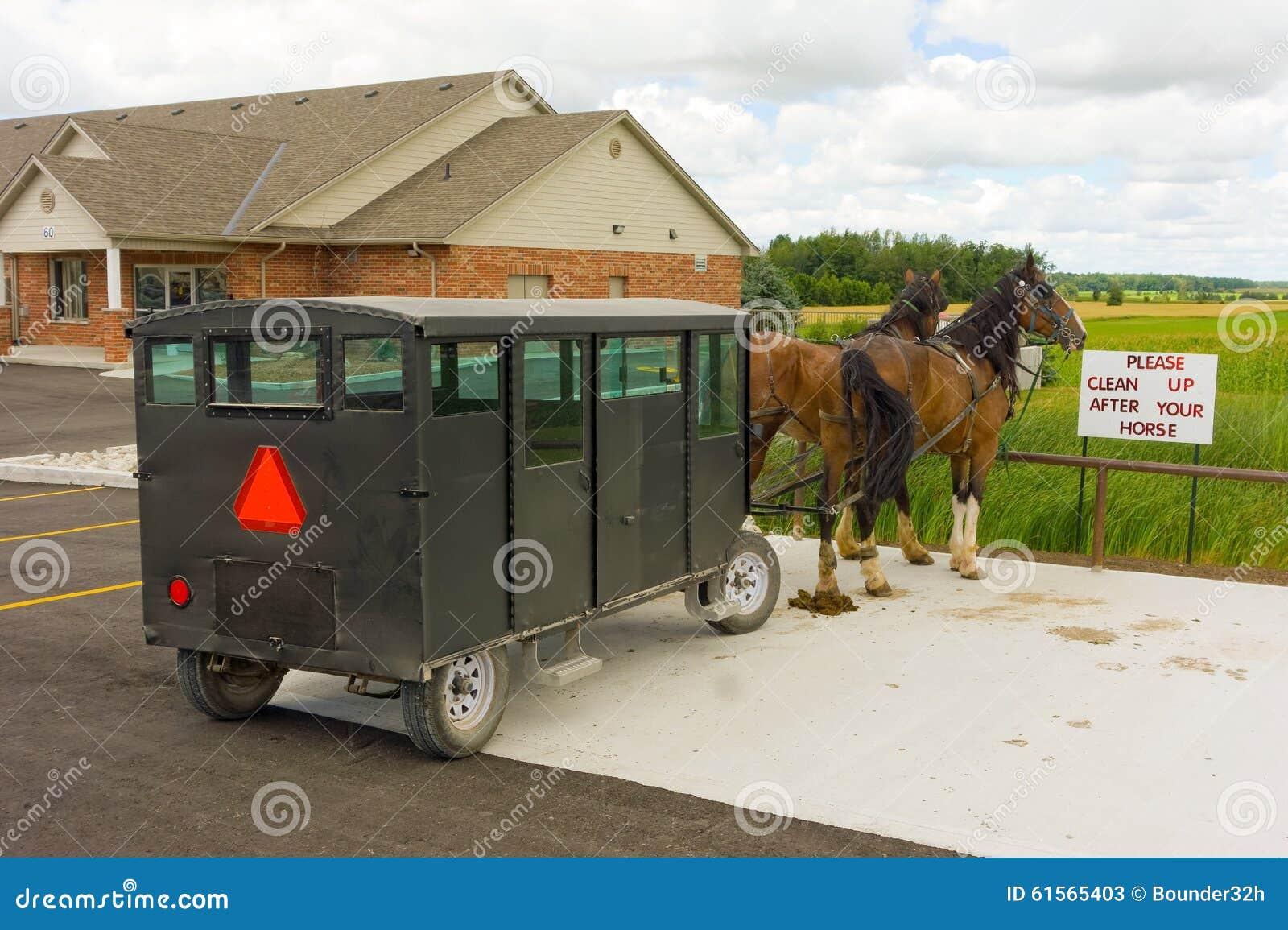 Deux ont armé des chevaux employés pour tirer un chariot amish