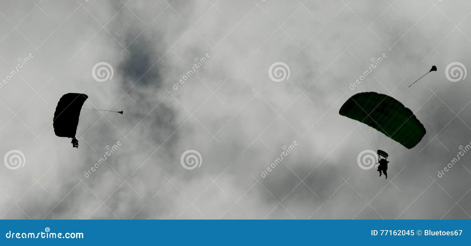 Deux parachutistes exécutant le parachutisme avec des parachutes