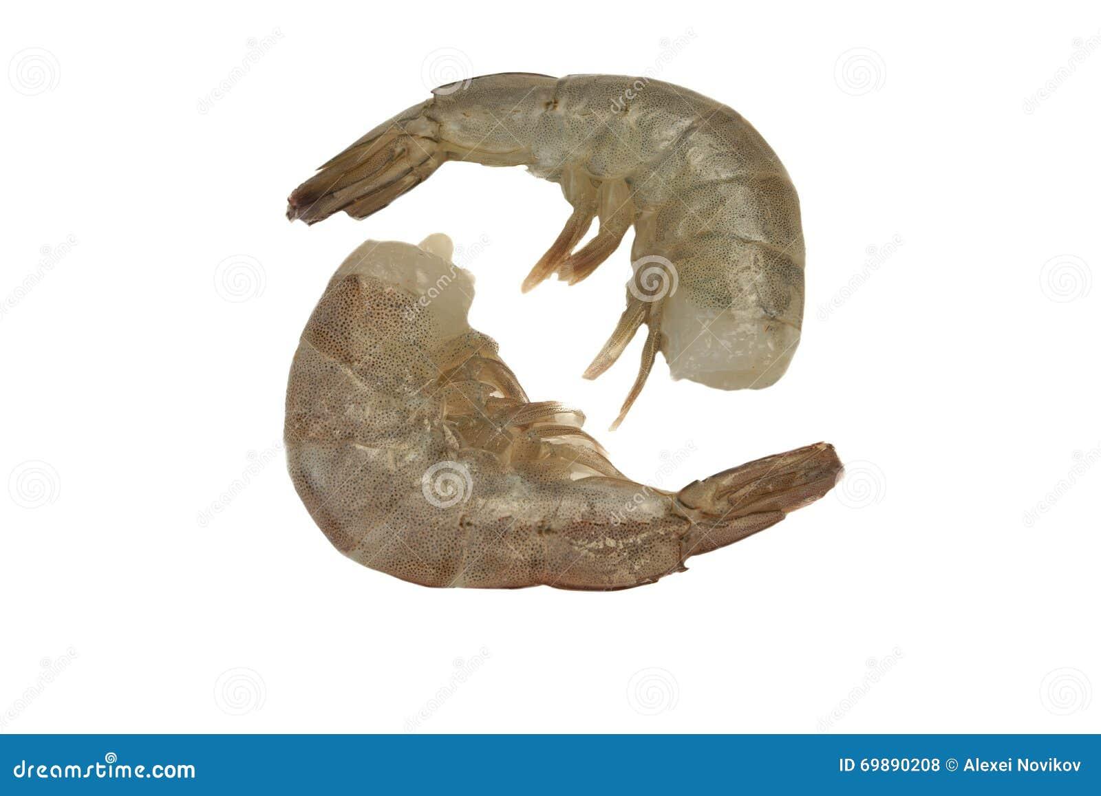 Deux rangée crue du Roi Shrimps Laying In d isolement sur le blanc