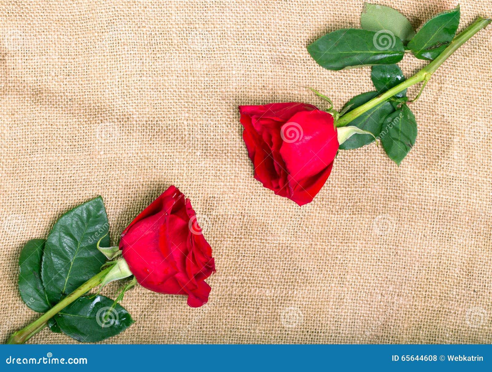 Deux roses rouges dans les coins opposés d une serviette de renvoyer, dessus