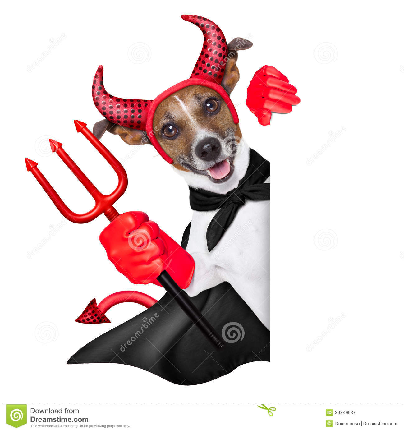 Devil Dog Royalty Free Stock Photography - Image: 34849937