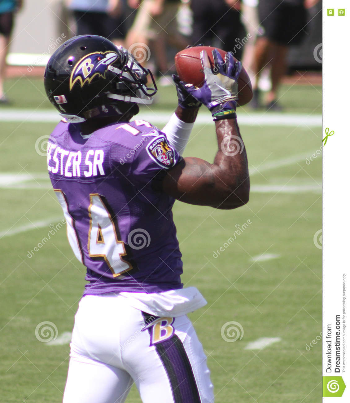 sale retailer ca4d0 c173a Devin Hester, Sr editorial photography. Image of sports ...