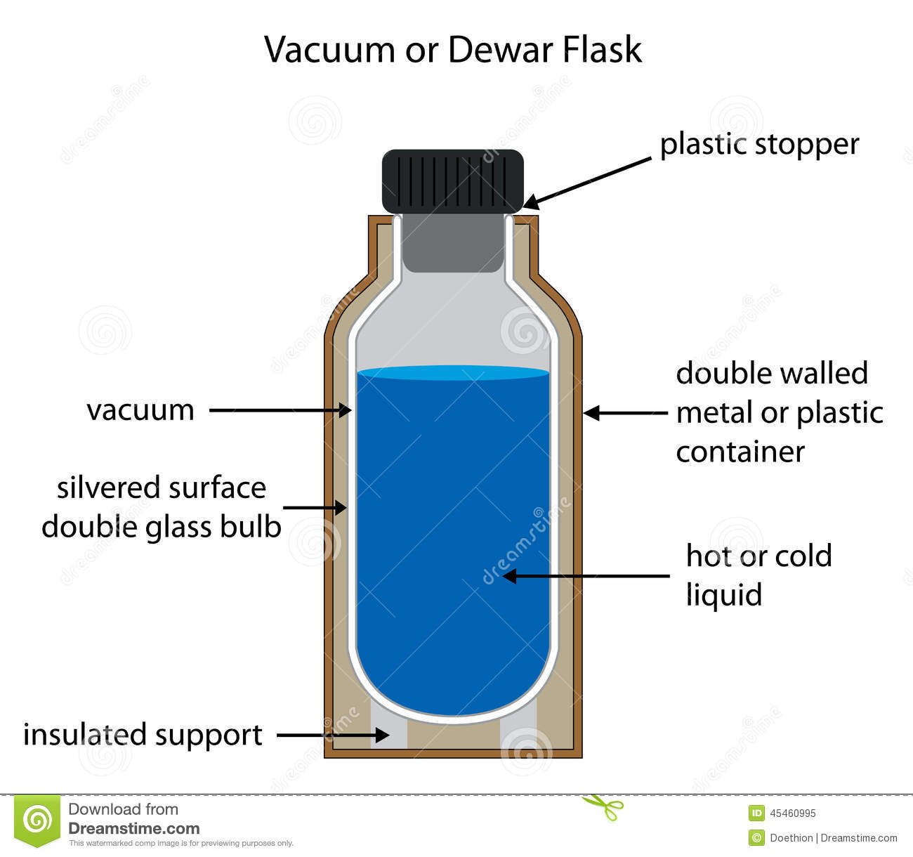 Dewar Or Vacuum Flask Labelled Diagram Stock Vector