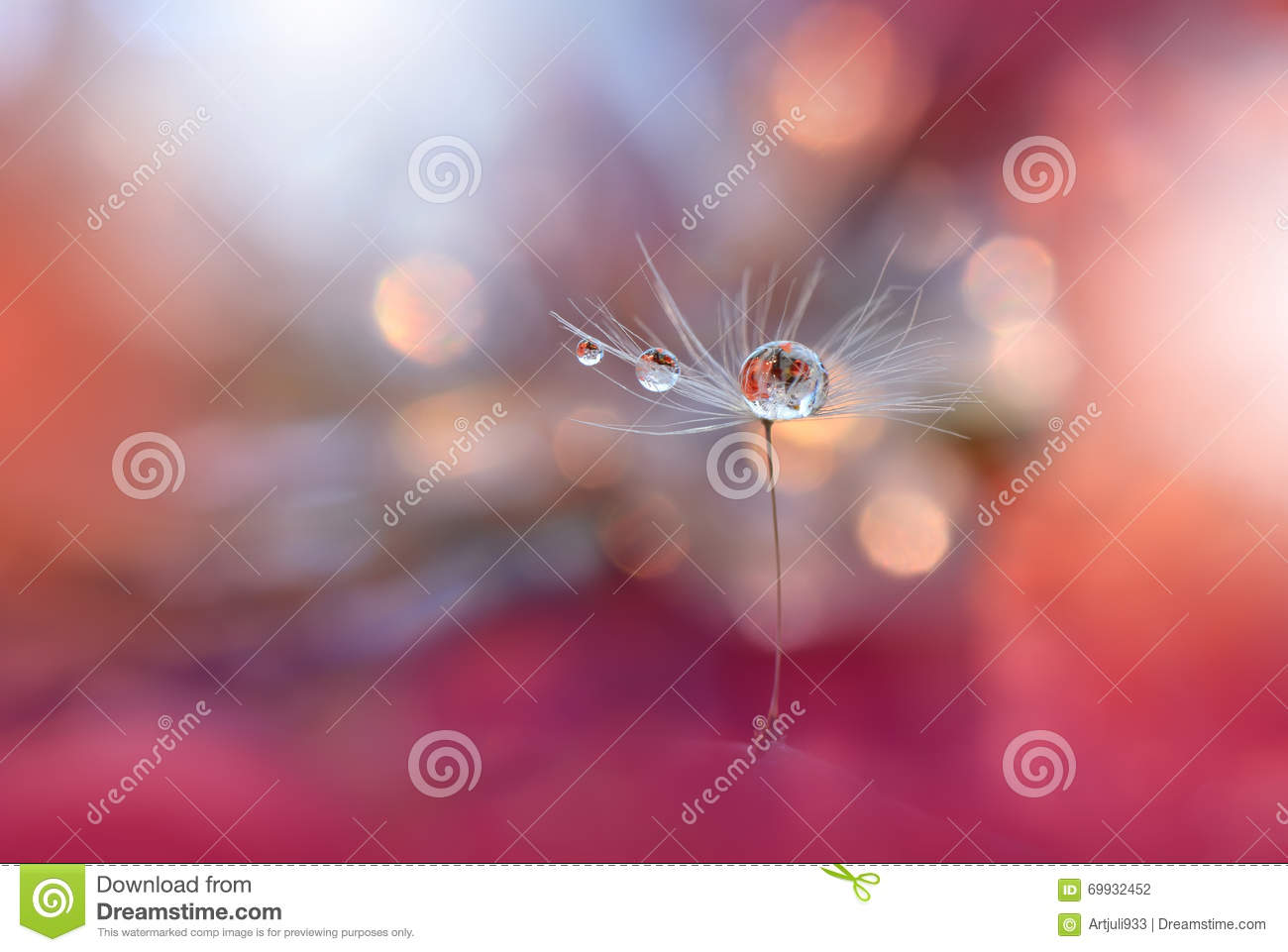 Beautiful Nature.Abstract Macro Photography.Amazing Colorful Wallpaper.Orange and Yellow Colors.Art,creative,design.