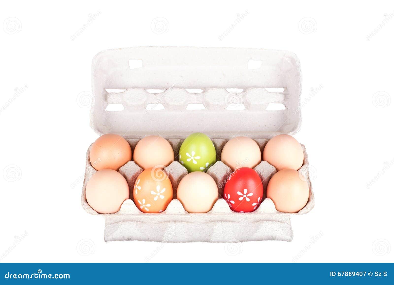 Dez ovos em um pacote da caixa isolado