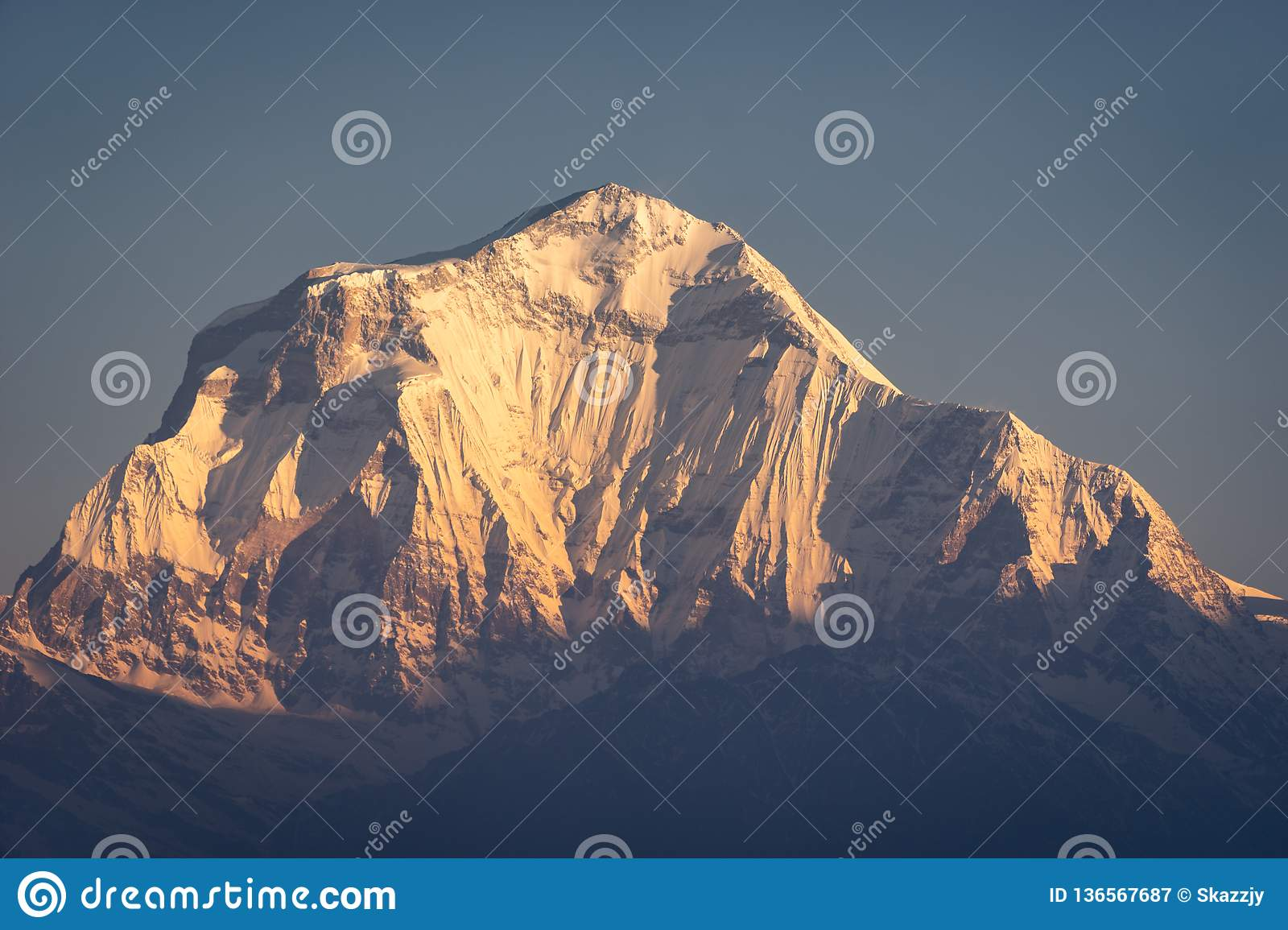Dhaulagiri mountain peak, seventh highest peak in the world in a morning sunrise, Annapurna range, Himalayas mountain ,Nepal