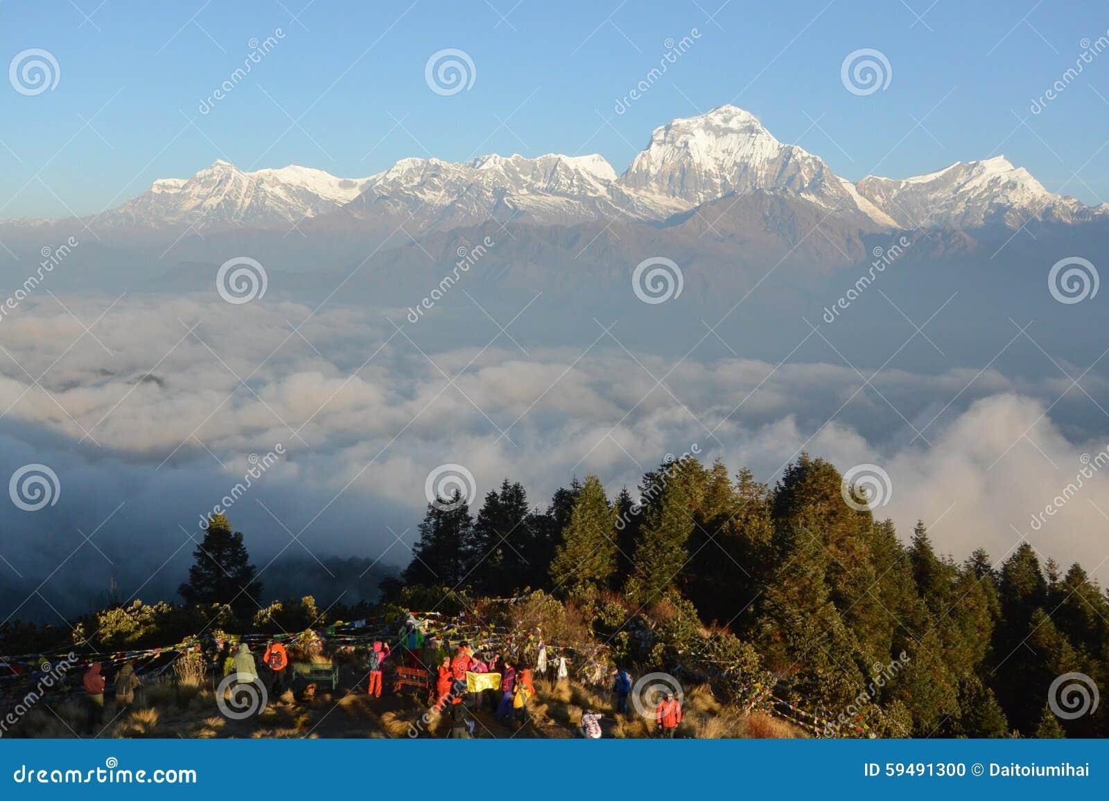 Dhaulagiri mountain on sunrise, Poon Hill, Himalaya, Nepal