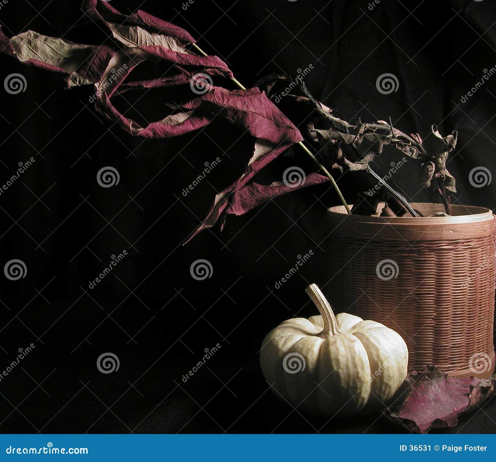 Di autunno vita ancora