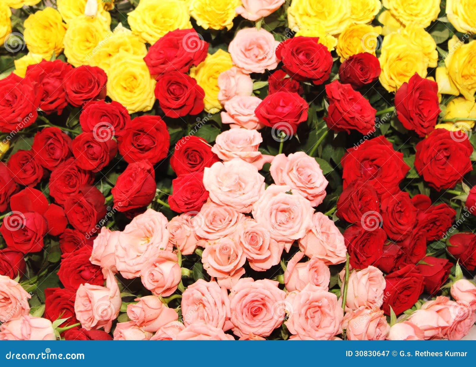 Di letto rosa colorato di tri