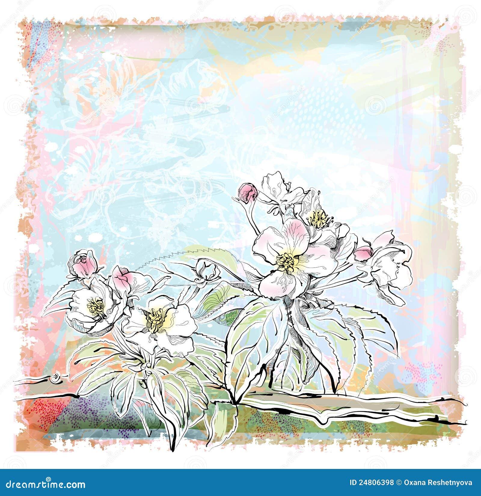 Di melo in fioritura