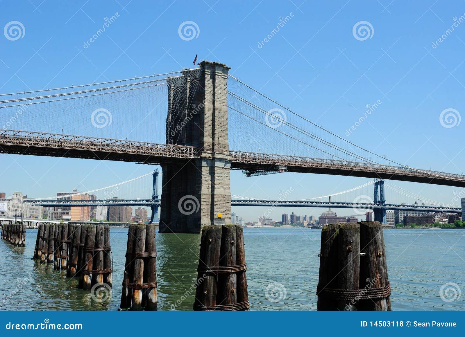 Dia da ponte de Brooklyn