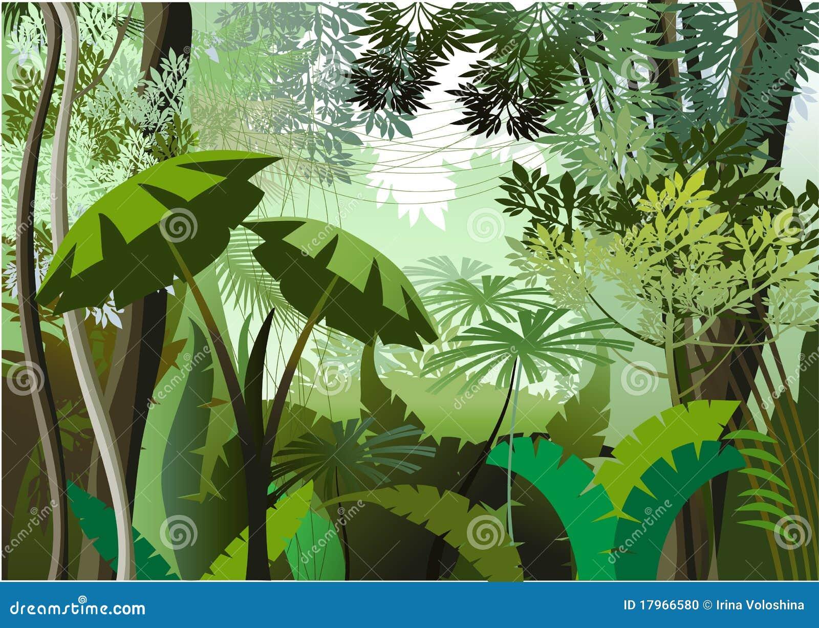 Dia da selva