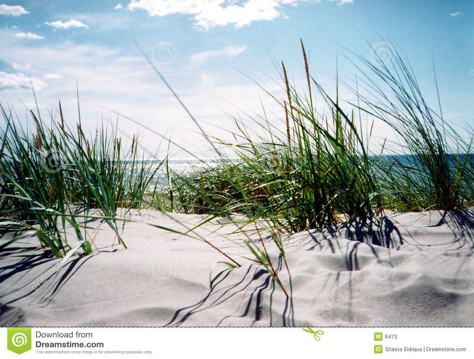 Dia de verão desobstruído pelo beira-mar