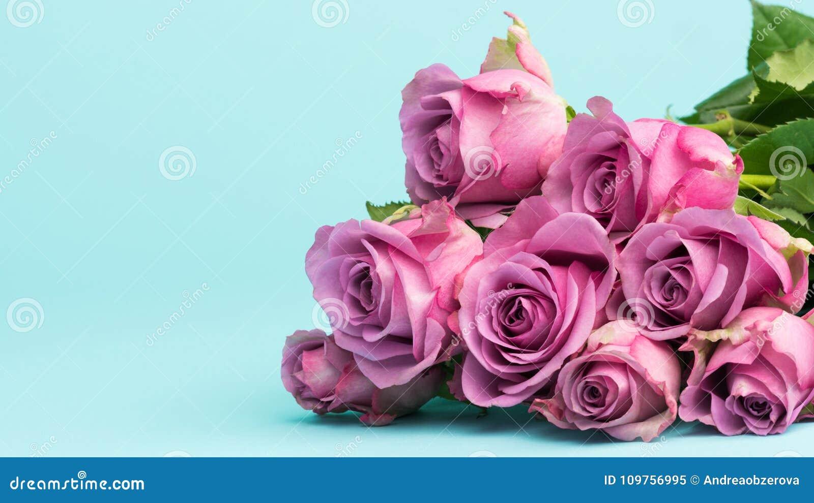 Dia do ` s do dia, do Valentim do ` feliz s do dia, das mulheres do ` s da mãe ou fundo do aniversário Cartão com as rosas cor-de