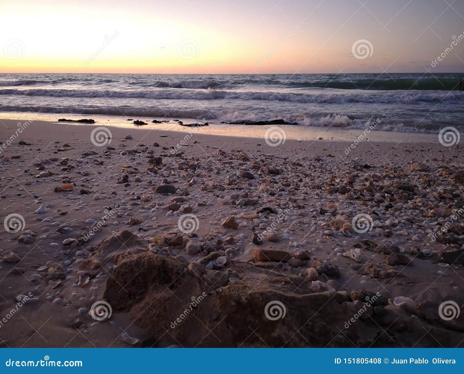 Dia ideal na praia