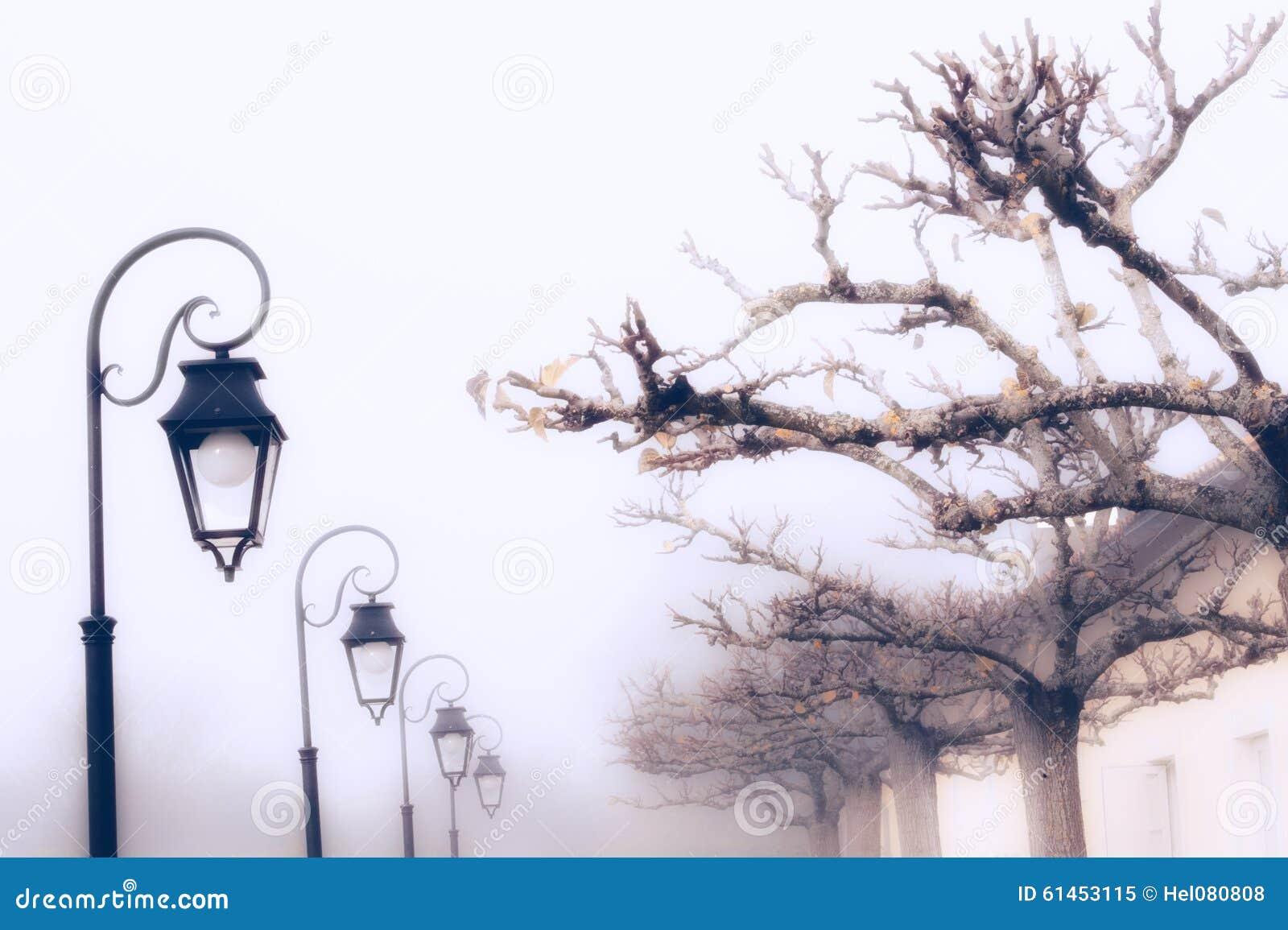 Dia nevoento em França