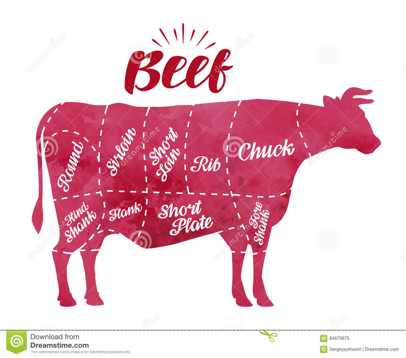 Diagram cutting cow meat butcher shop bull beef vector diagram cutting cow meat butcher shop bull beef vector illustration pooptronica