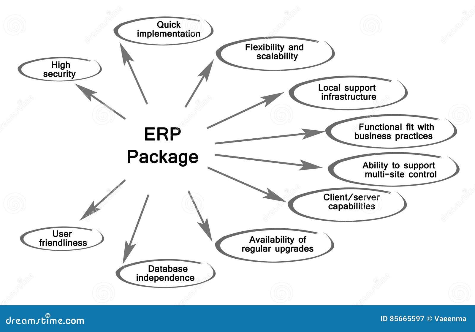 Diagram ERP pakunek