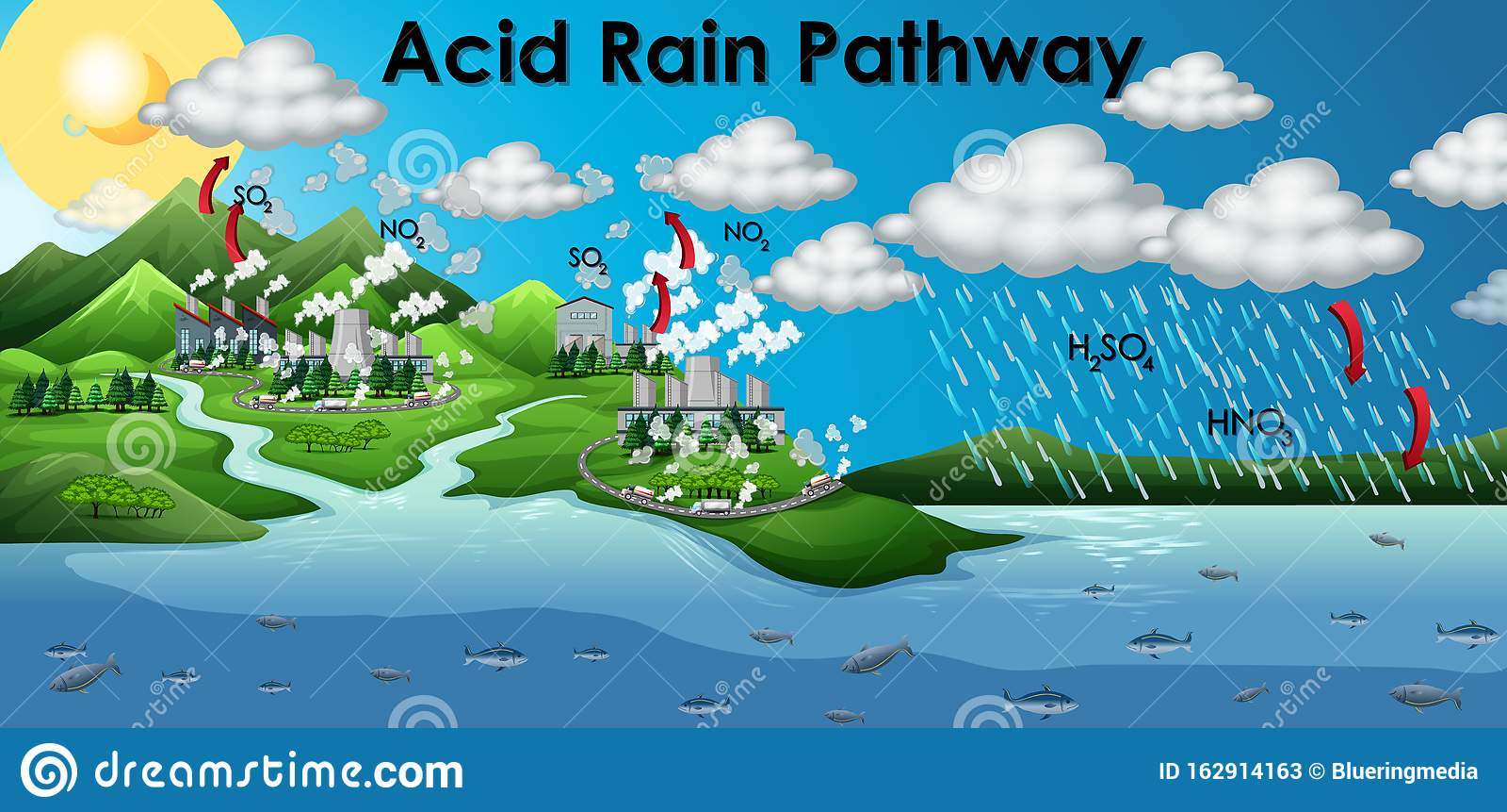 Diagram Showing Acid Rain Pathway Stock Image