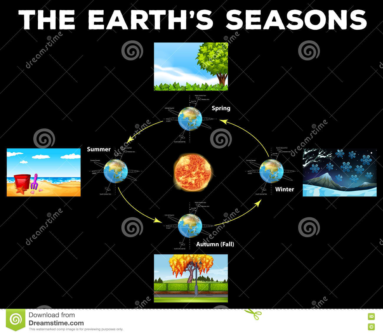 Diagram showing seasons on earth stock vector image 72047710 diagram showing seasons on earth pooptronica