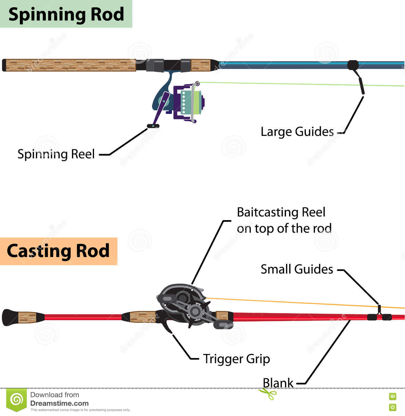 fishing pole and reel diagram    diagram    of spinning rod and baitcasting rod vector     diagram    of spinning rod and baitcasting rod vector
