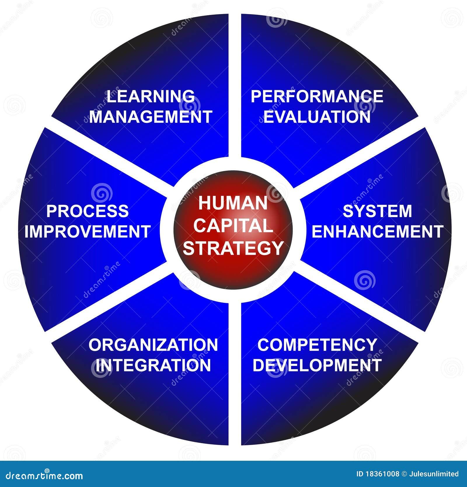 Diagrama Del Asunto De La Estrategia Del Capital Humano Ilustración ...