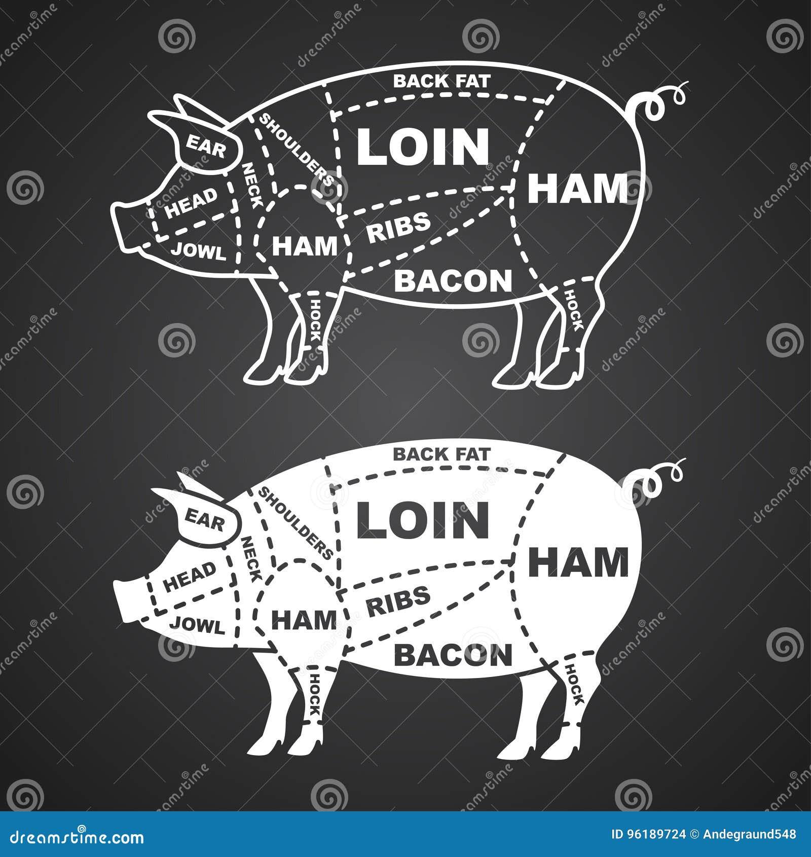 Diagrama dos cortes de carne de porco isolado no vetor preto