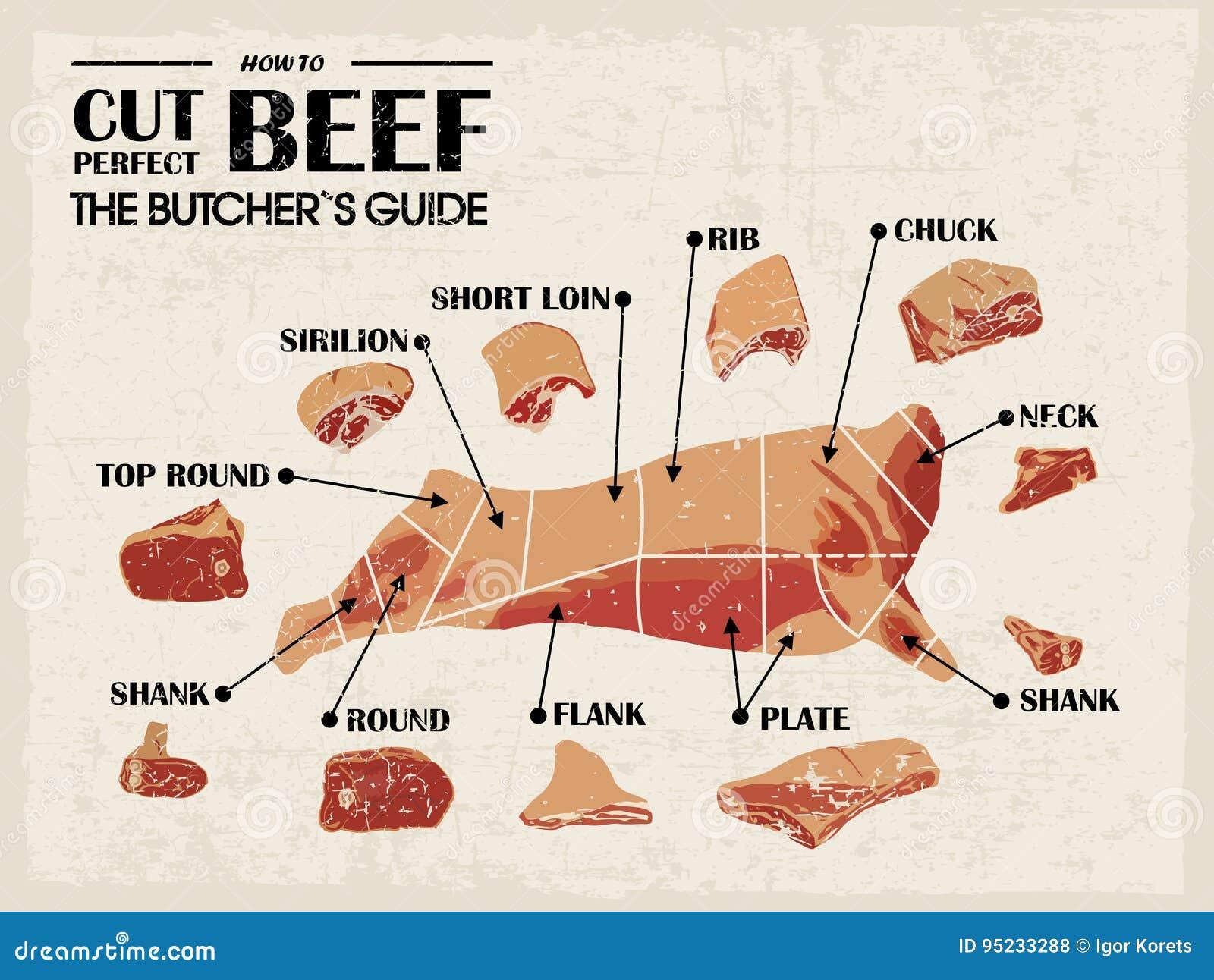 Diagramma d annata del macellaio del manifesto e schema - mucca Taglio dell insieme della carne Illustrazione di vettore