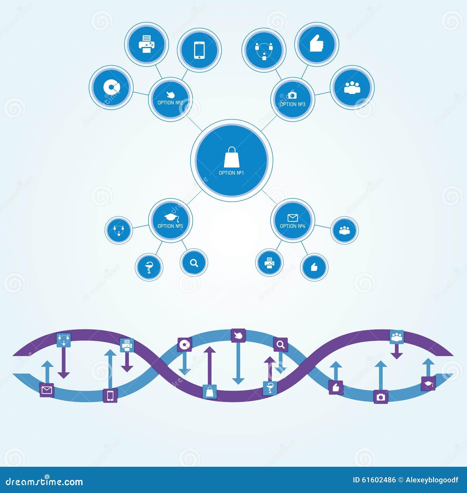 Diagrammi lo schema dei cerchi delle dimensioni differenti collegate dalle linee rette nello stile piano L interazione è descritt