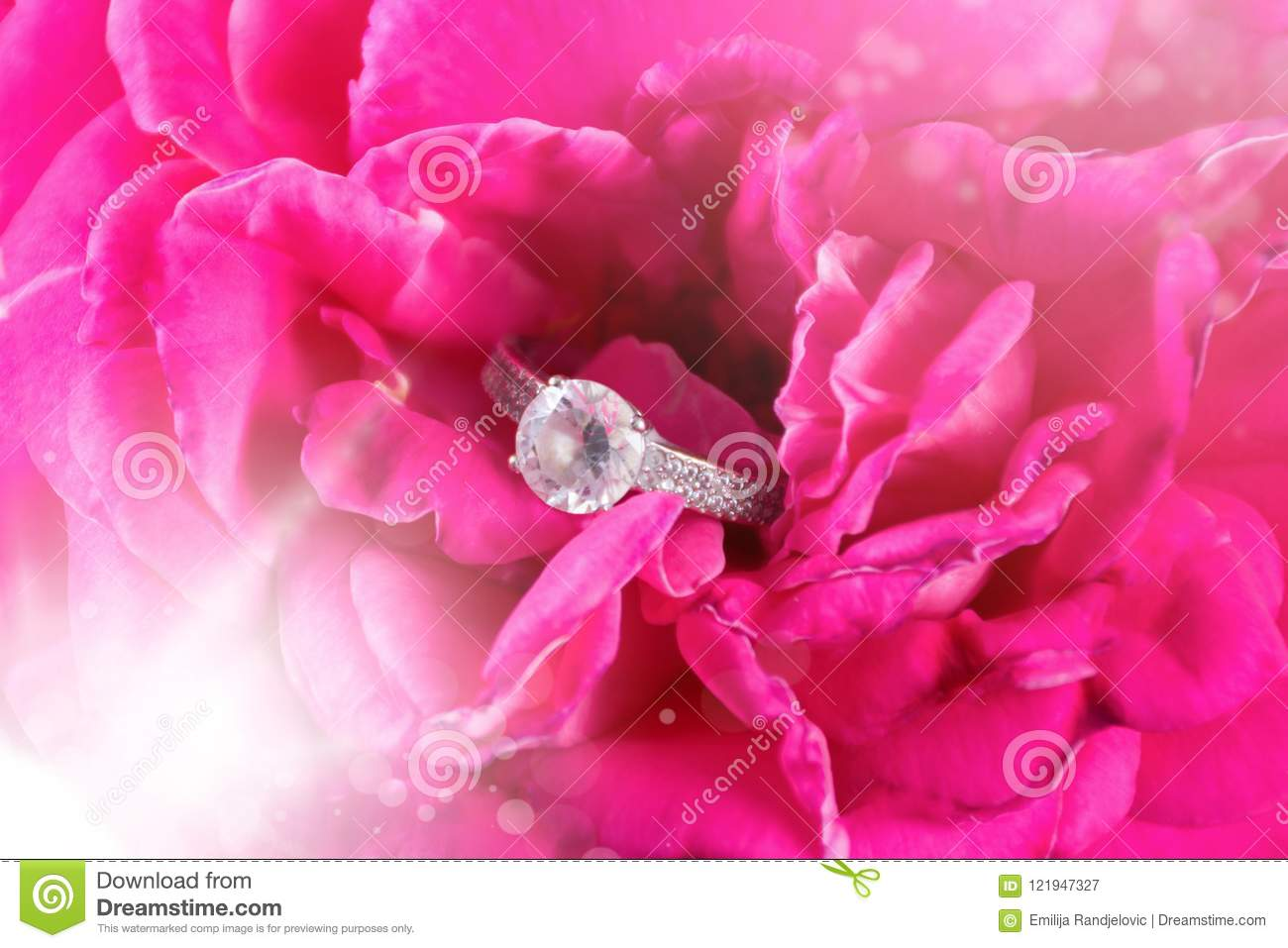 Diamond Engagement Wedding Ring In Pink Soft Rose Flower Stock Image ...