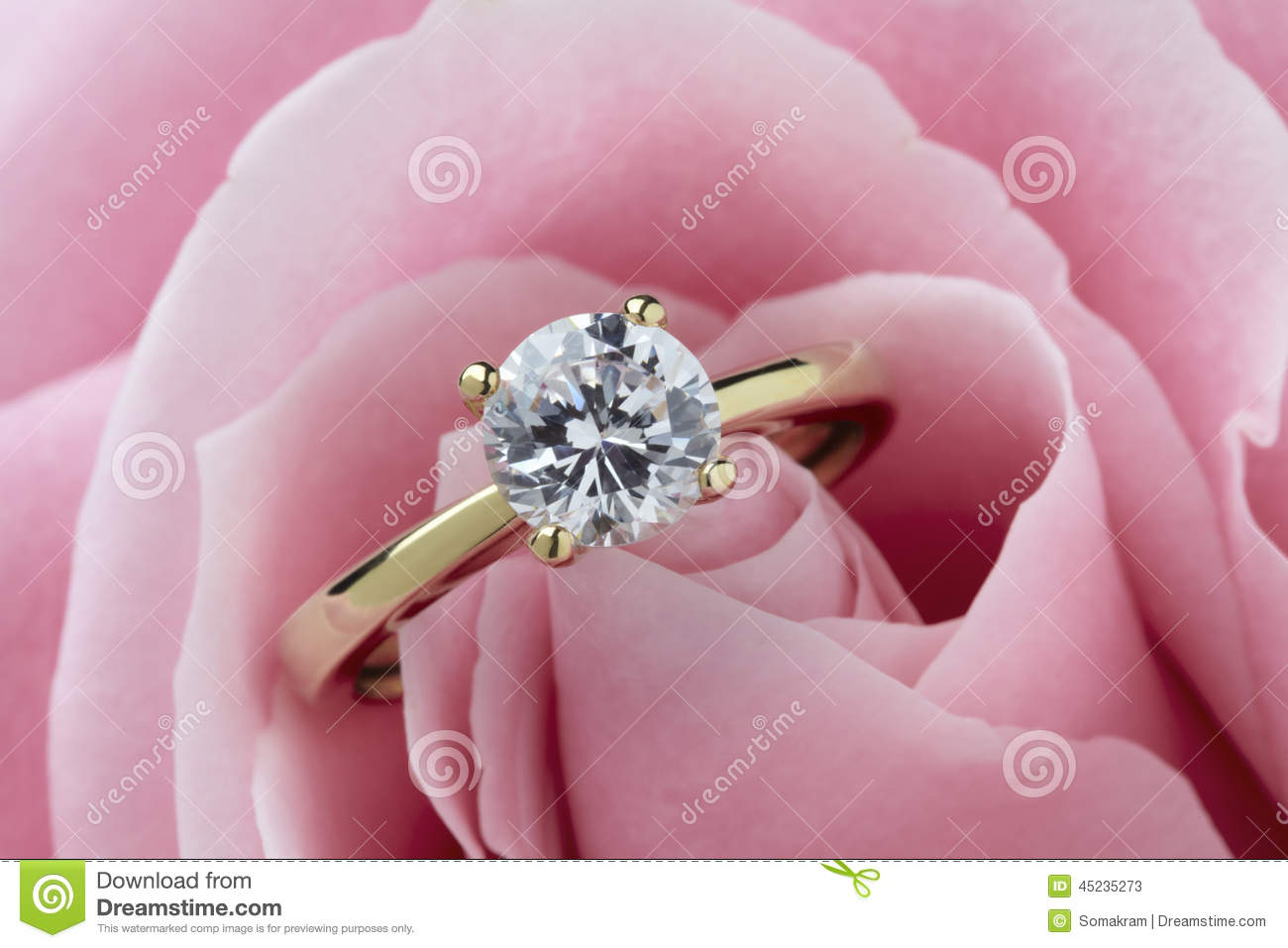 Diamond Ring and Rose stock image. Image of gold, macro - 45235273