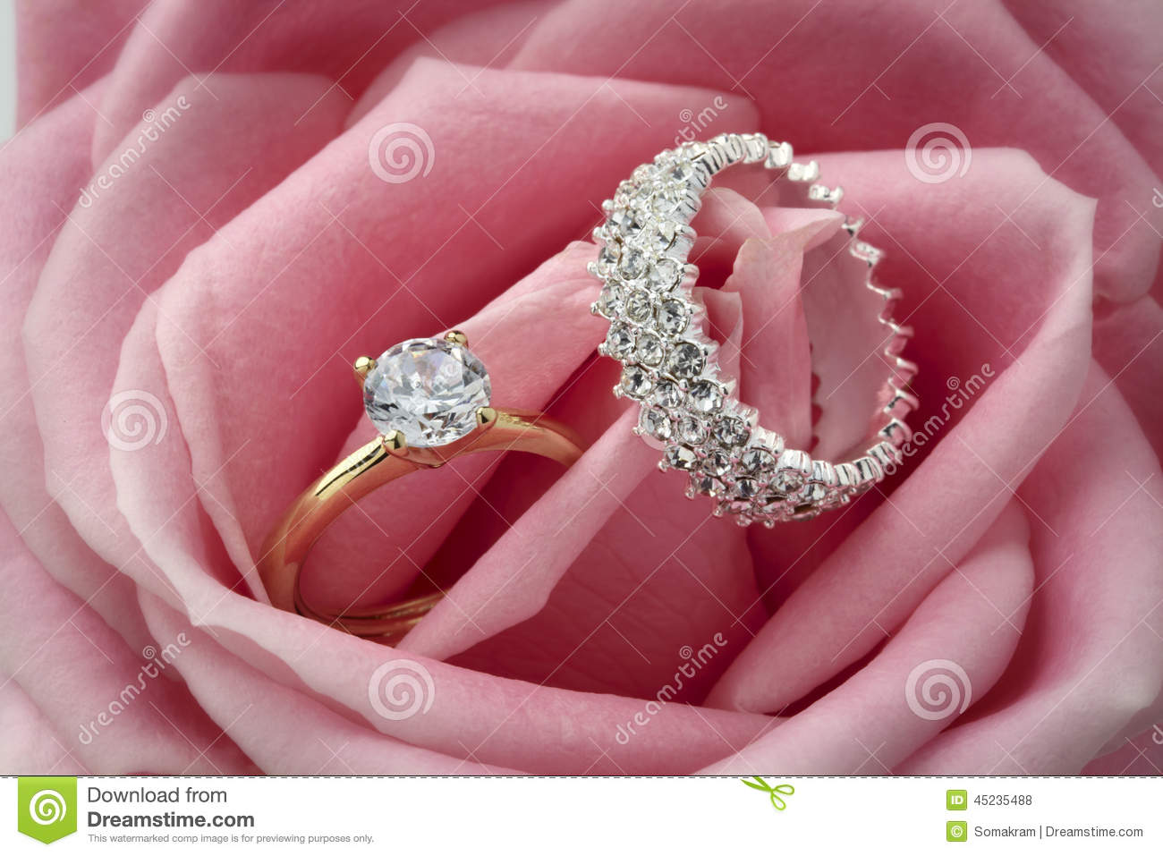 Diamond Rings and Rose stock photo. Image of ring, devotion - 45235488