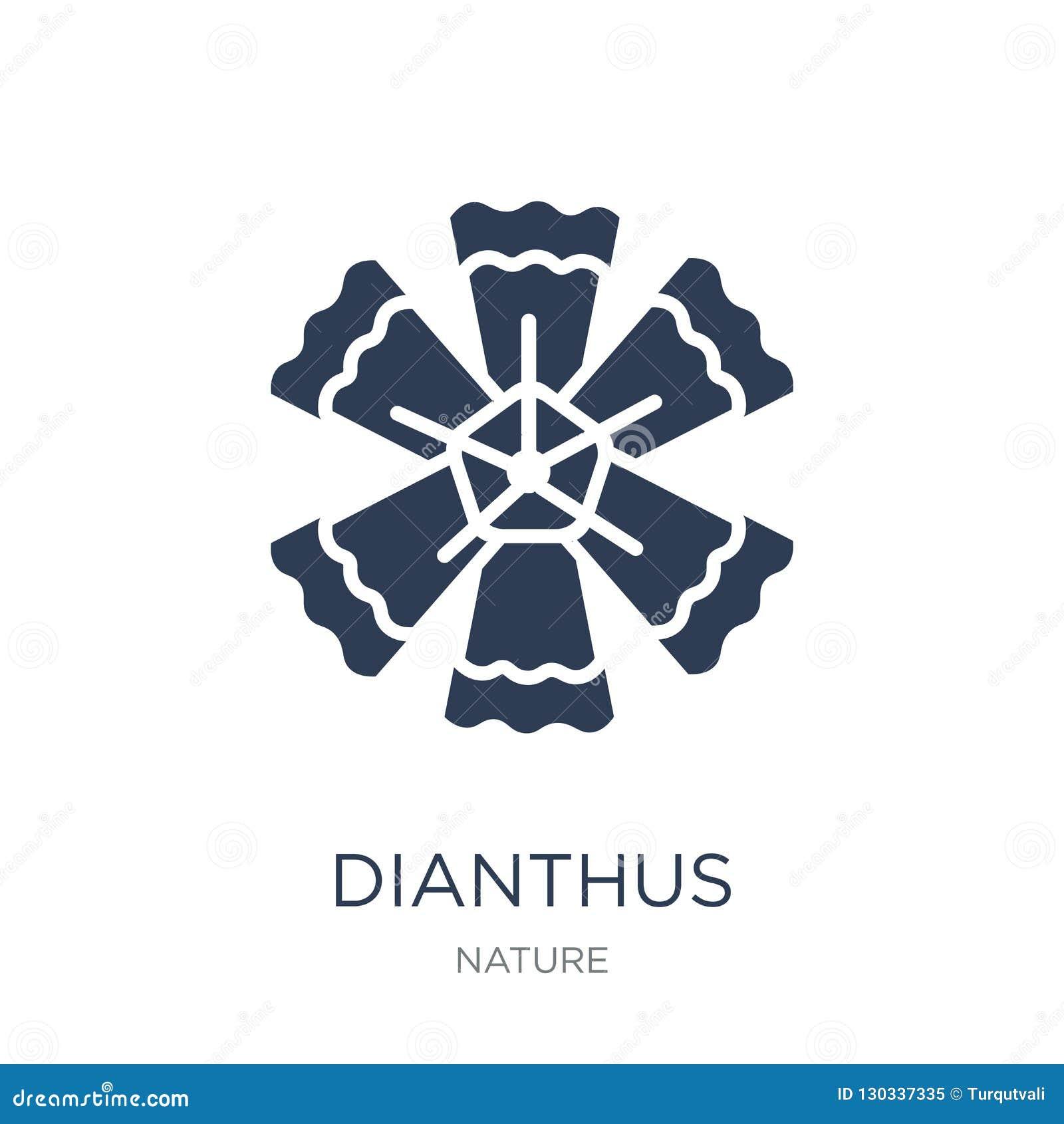 Dianthussymbol Moderiktig plan vektorDianthussymbol på den vita backgroen