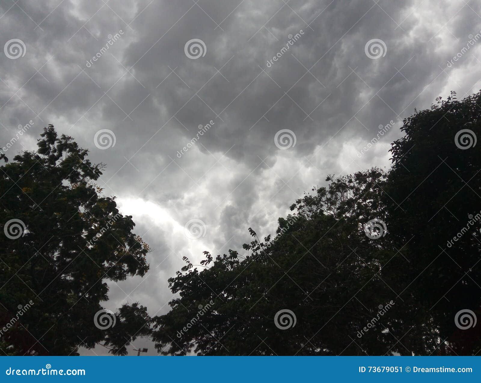 Dias chuvosos 2