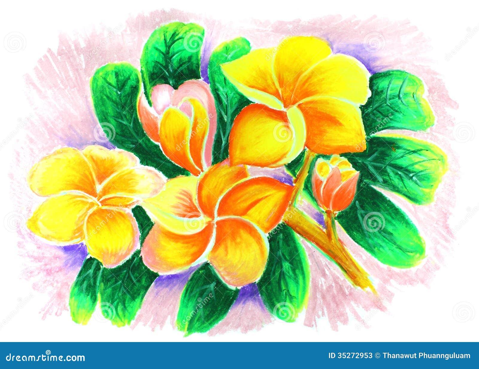 Dibujo Color De Rosa Del Desierto Imagen De Archivo Imagen De