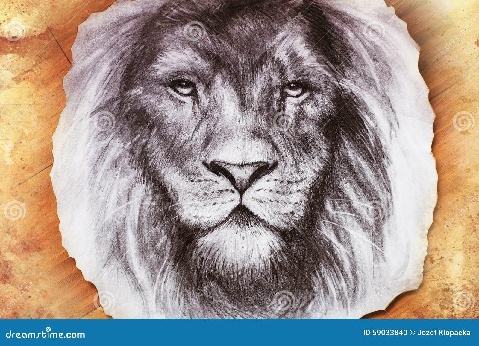 Dibujo De Una Cabeza Del León Con A Majestuoso Stock De