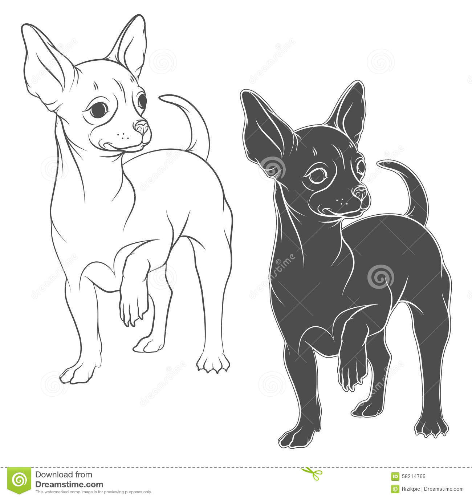 Dibujo Del Vector De Una Chihuahua Ilustración del Vector ...