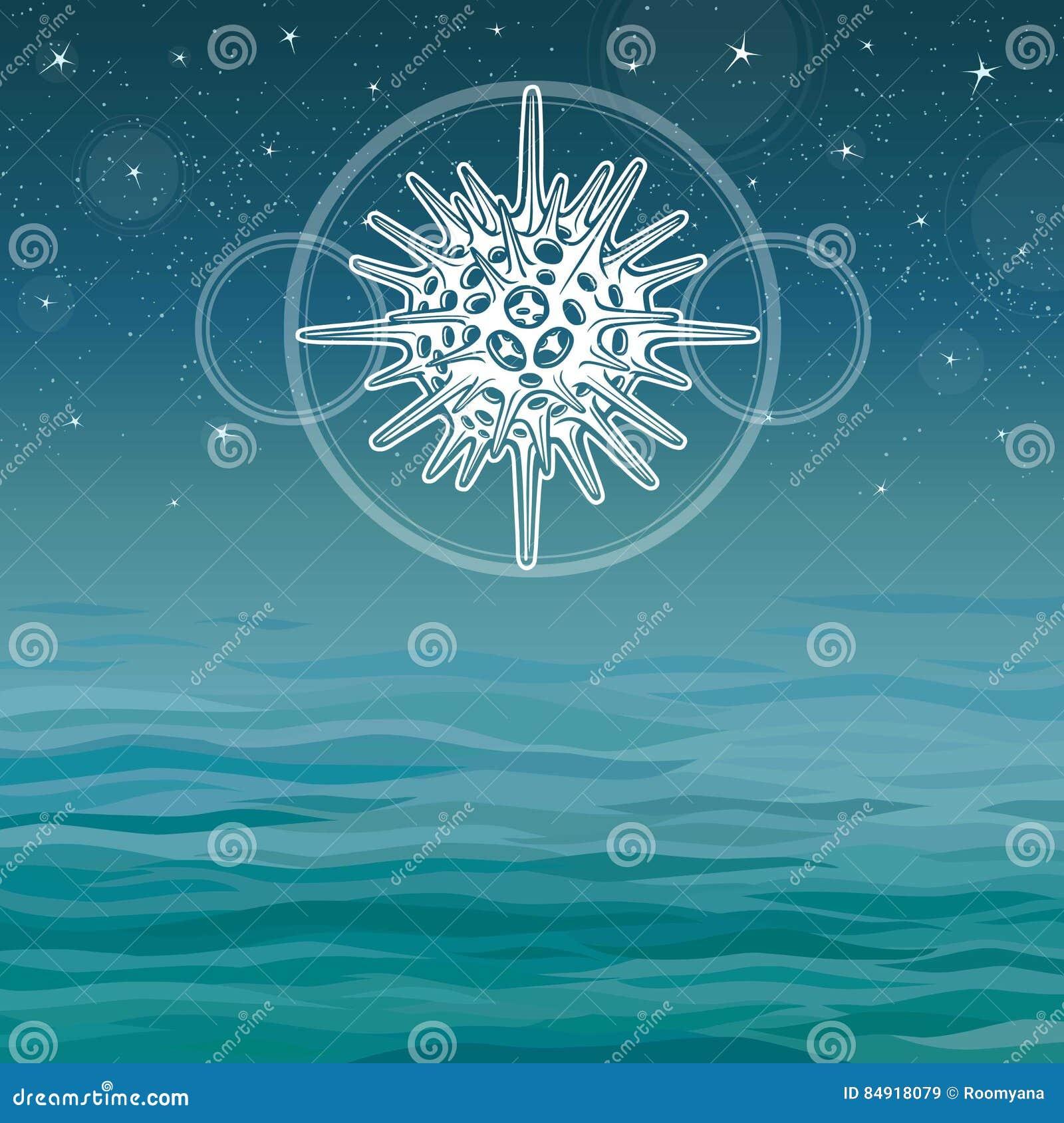 Dibujo estilizado de un radiolario - el mamífero marino elemental