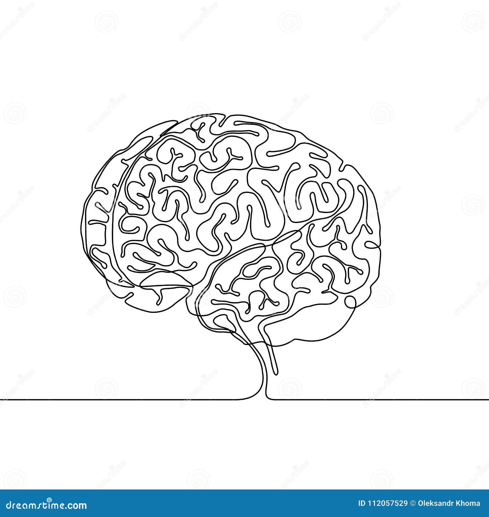 Dibujo lineal continuo de un cerebro humano con las convoluciones del cerebro y los surcos