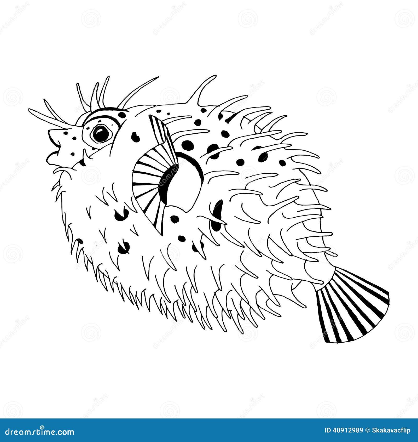 Dibujo original de los pescados de puerco espín de la espina dorsal